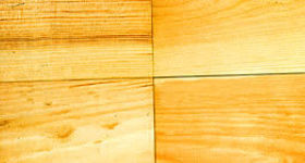 02 - Pin sylvestre - Sapin rouge du nord SRN_opt